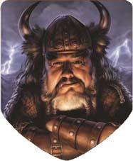 viking in shield