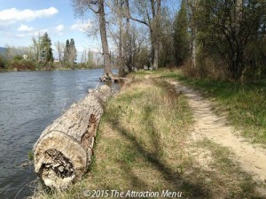 The trail offers great views of the river, birds, and I assume, other wildlife.