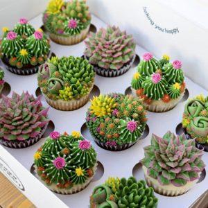 custom cactus/succulent cupcakes